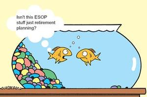 ESOP Questions