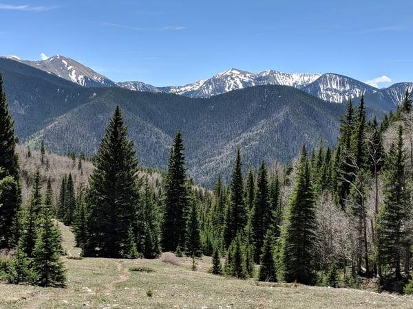 Gavilan Trail