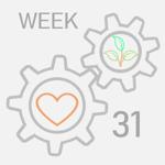 week--31