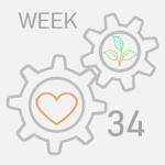 week--34
