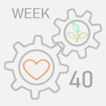week--40