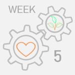 week-5-1
