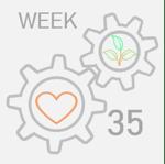 week35
