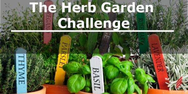 The Herb Garden Challenge